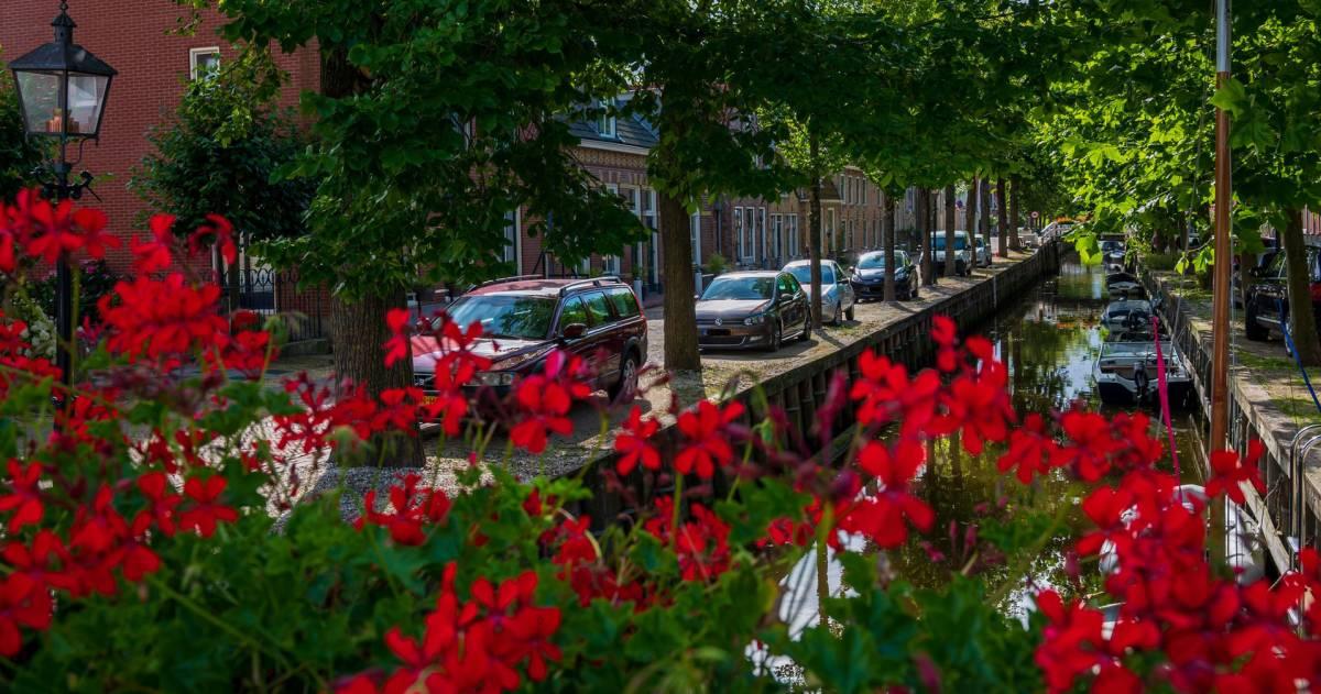 Een straatje in Harlingen met op de voorgrond rode bloemen